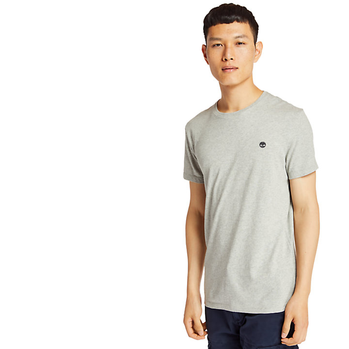 Dunstan River T-Shirt for Men in Grey-