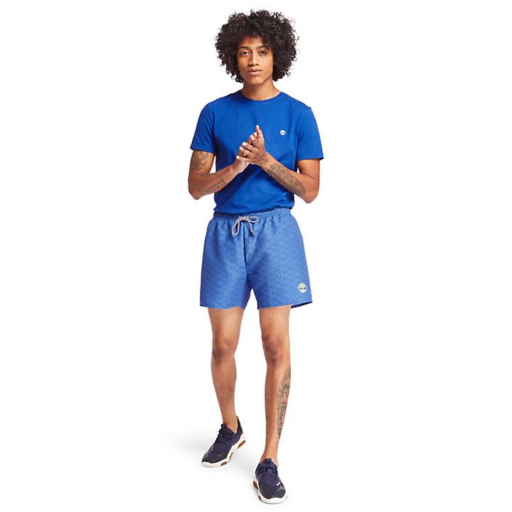 Dunstan River T-Shirt für Herren in Blau-
