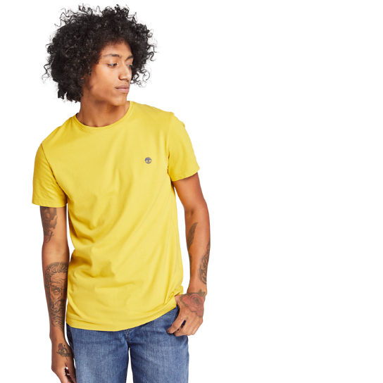 Dunstan River T-Shirt for Men in Yellow | Timberland