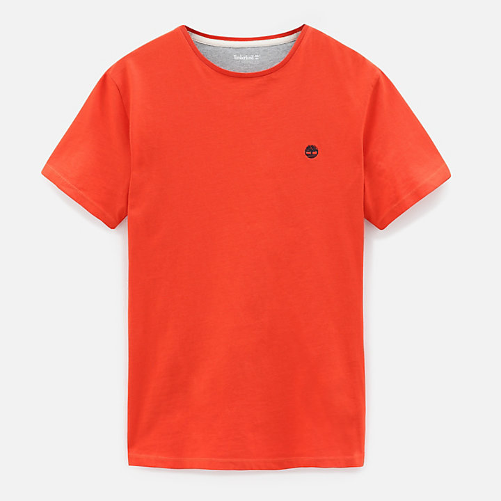 Dunstan River T-Shirt für Herren in Orange-