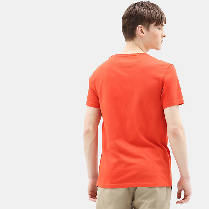 T-shirt Dunstan River pour homme en orange-