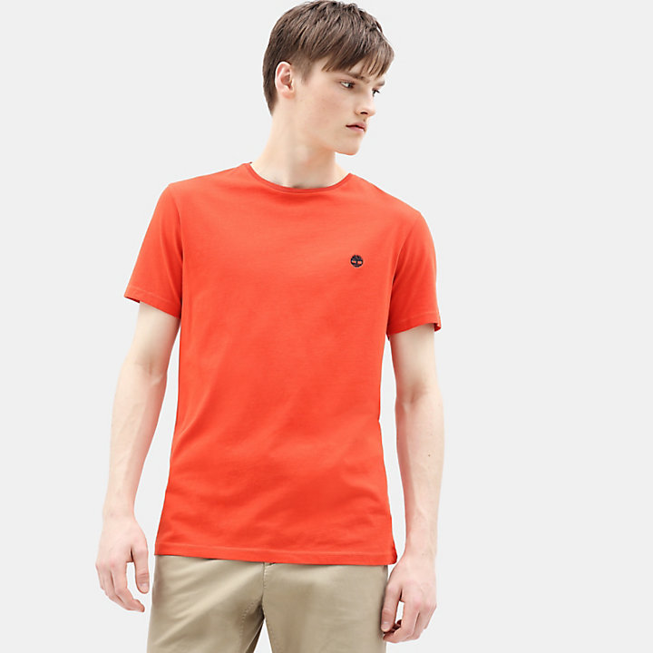 Dunstan River T-shirt voor Heren in oranje-