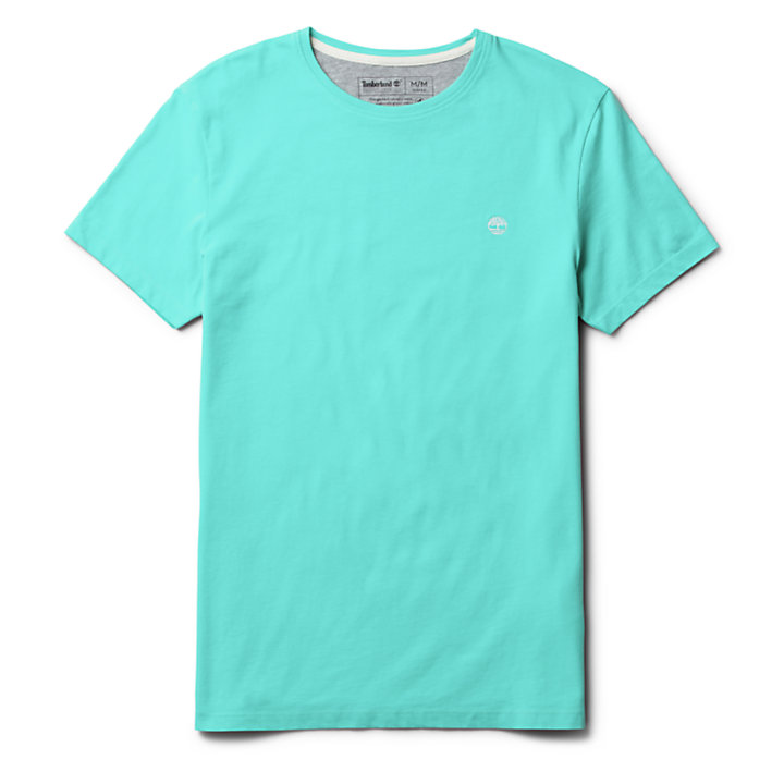 Dunstan River T-Shirt for Men in Green-