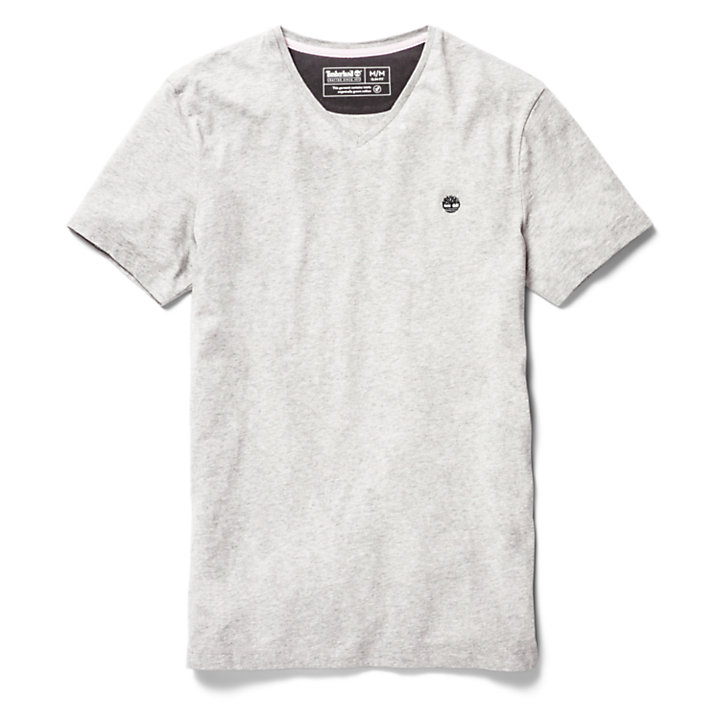Dunstan River Herren-T-Shirt mit V-Ausschnitt in Grau-