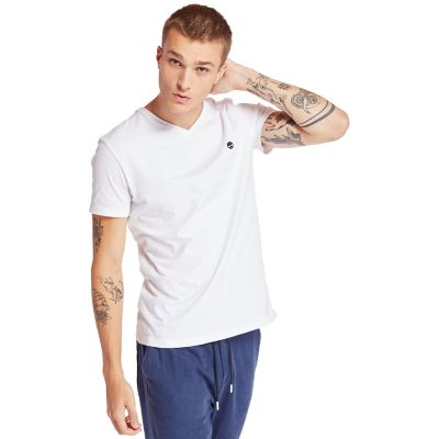 Dunstan+River+V-Neck+T-Shirt+for+Men+in+White