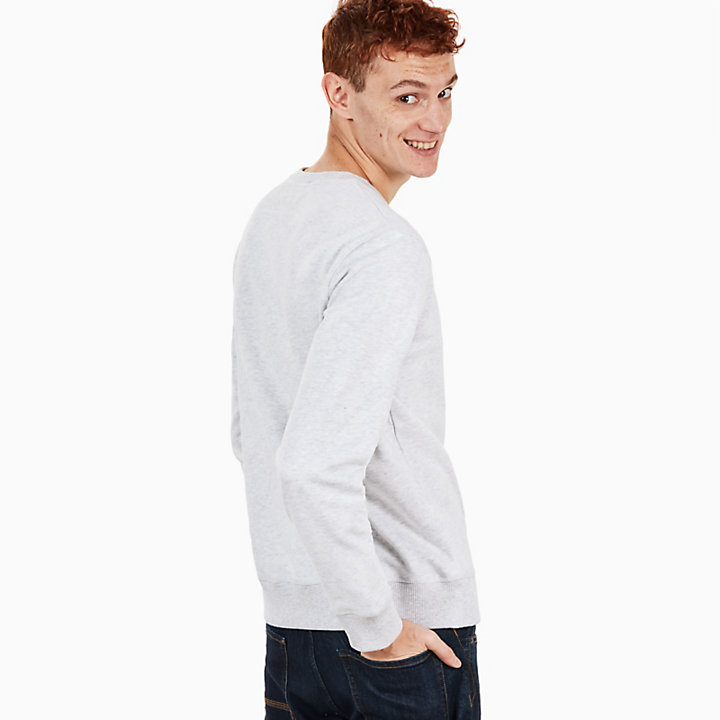 Taylor River Sweatshirt for Men in Pale Grey-