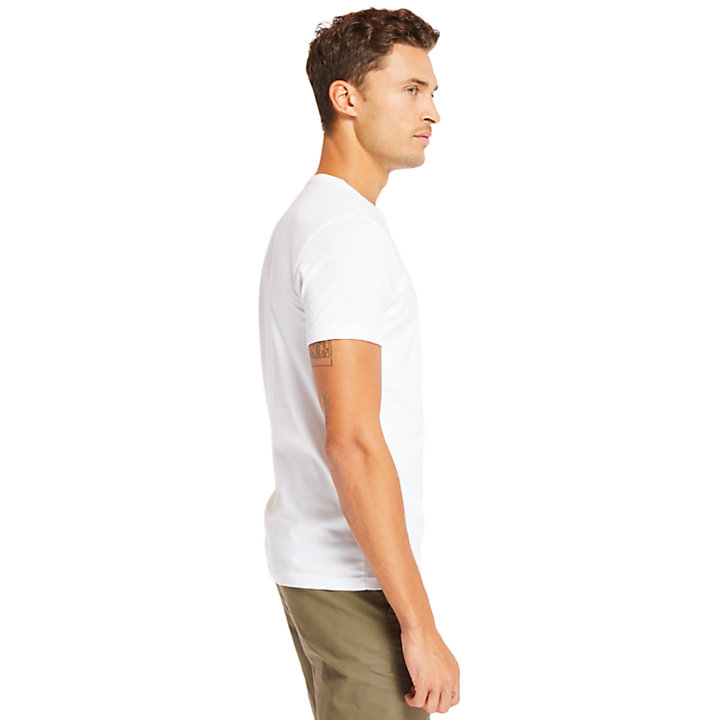 Three-Pack of T-Shirts for Men in Grey/White/Black-