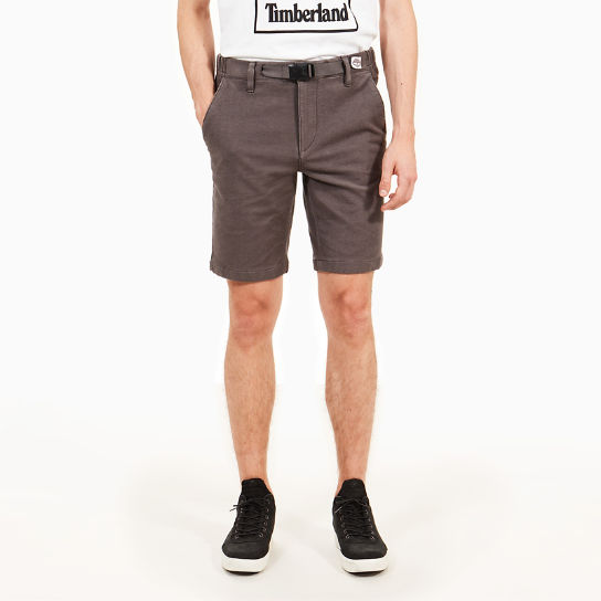 Short chino Squam Lake pour homme en gris | Timberland