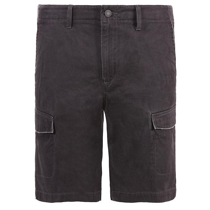 Pantalón Corto Cargo Webster Lake para Hombre en Gris-