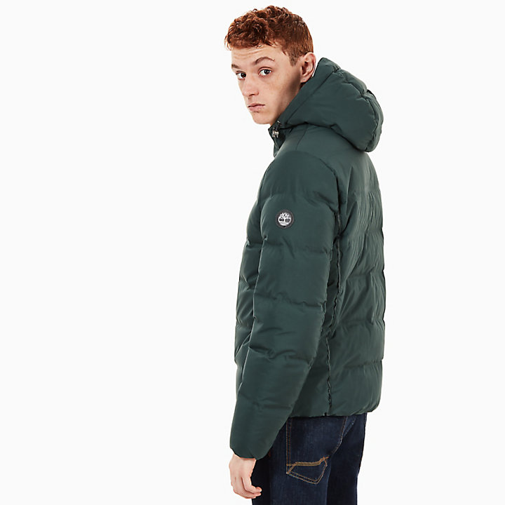 Goose Eye Jacket for Men in Dark Green-