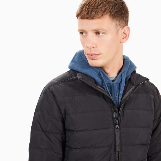 Bear Head Jacket for Men in Black | Timberland