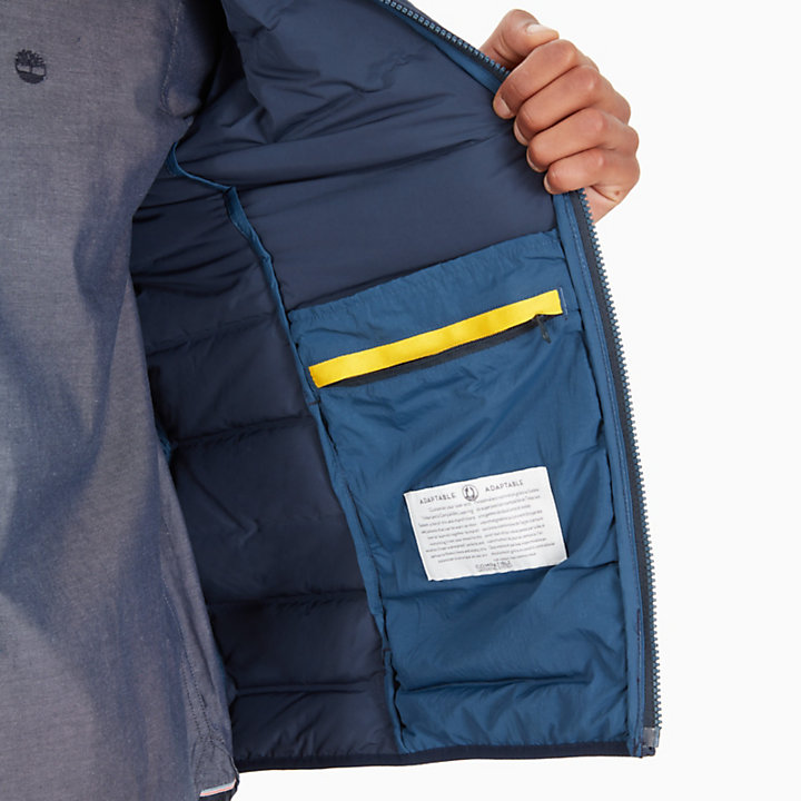 Bear Head Jacke für Herren in Navyblau-