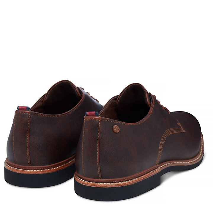 Brook Park Oxford for Men in Brown-