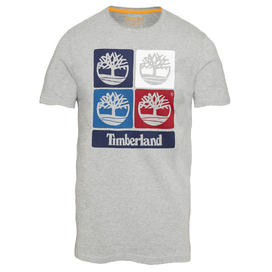 Men's Vintage Inspired Print T-Shirt Grey | Timberland