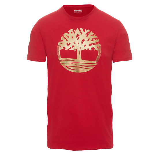 T-shirt Homme Rouge | Timberland