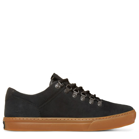 Adventure 2.0 Cupsole Alpine Oxford for Men in  Black | Timberland