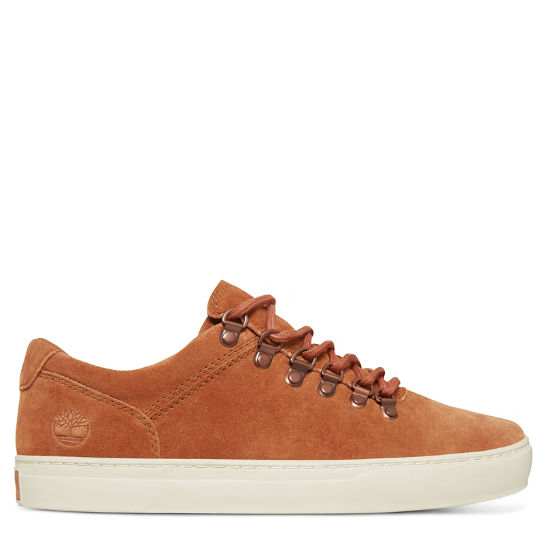 Adventure 2.0 Cupsole Alpine Oxford Marrón Hombre | Timberland
