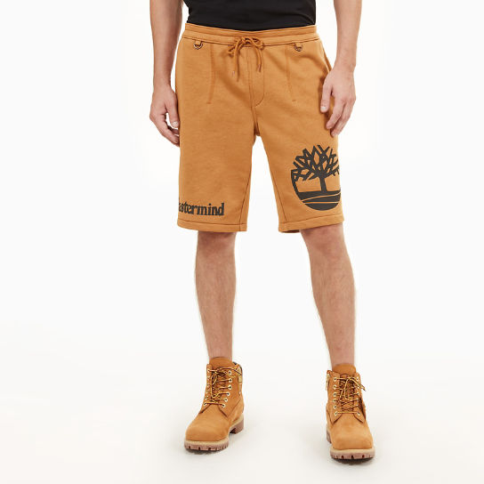 Timberland® x mastermind Shorts for Men in Yellow | Timberland