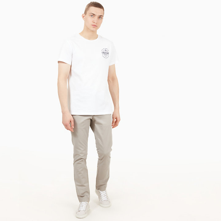 Sargent Lake Twill Chinos for Men in Light Grey-