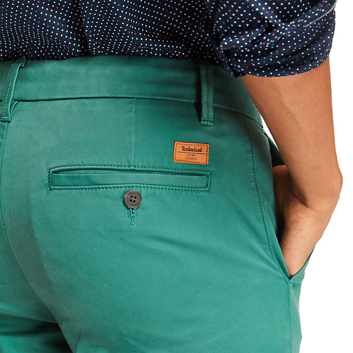 Pantaloni Chino da Uomo Sargent Lake Slim-Fit in verde-