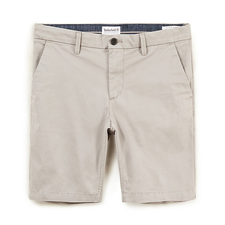 Squam Lake Chino Short voor Heren in Grijs-beige-
