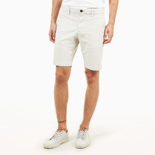 Squam Lake Chino Shorts for Men in Light Grey | Timberland