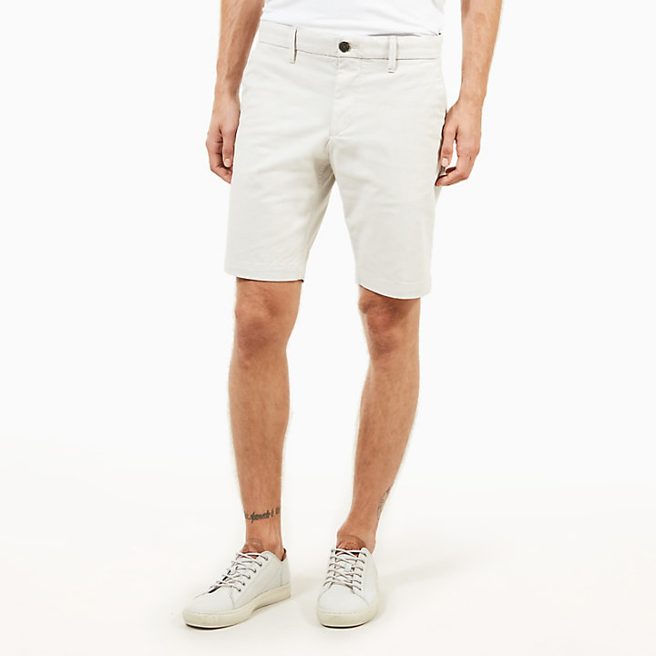 Squam Lake Chino Shorts for Men in Light Grey-