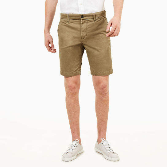 Short chino Squam Lake pour homme en vert | Timberland