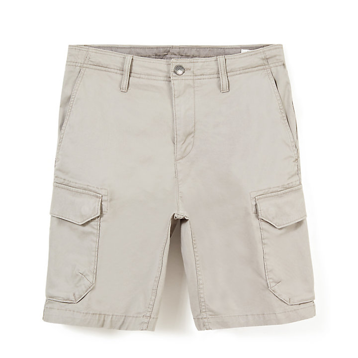 Squam Lake Cargo Shorts for Men in Grey-