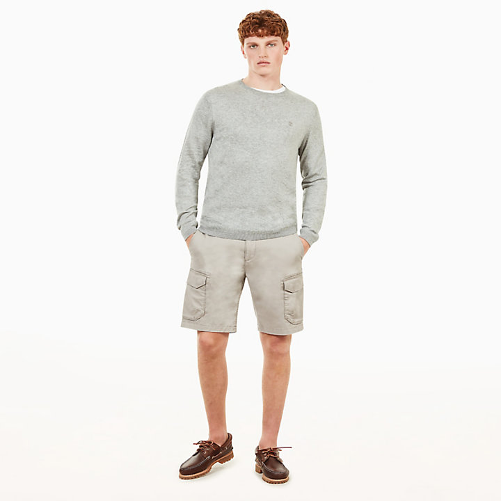 Squam Lake Cargo Short voor Heren in Grijs-