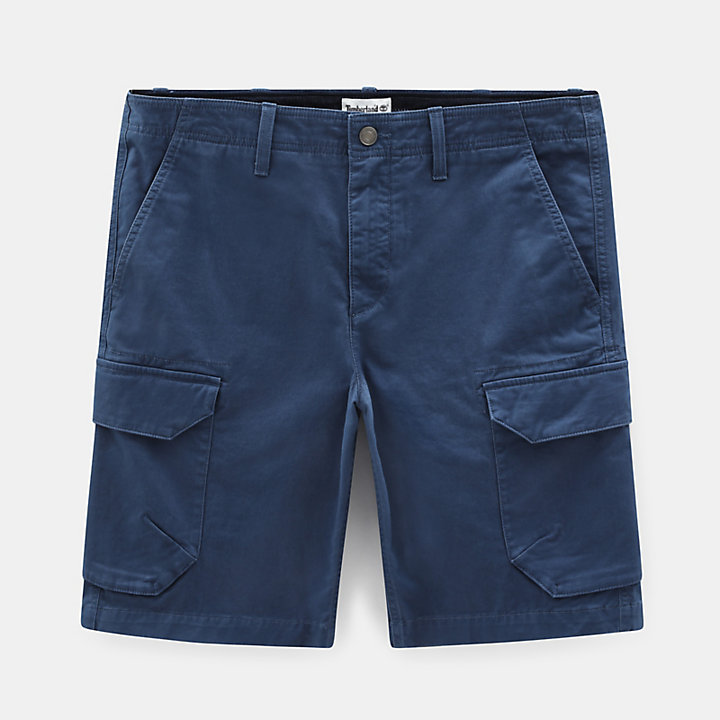 Webster Lake Cargo Shorts für Herren in Blau-