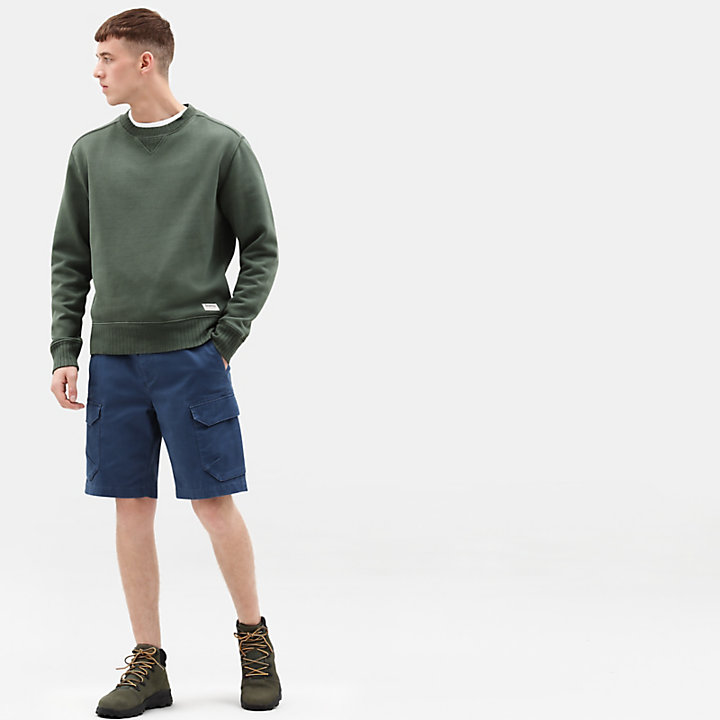 Shorts Cargo da Uomo Webster Lake in blu-