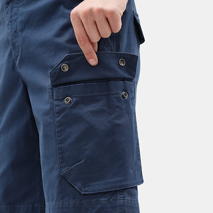 Webster Lake Cargoshorts voor Heren in blauw-