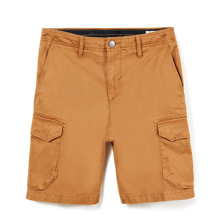 Short cargo Squam Lake pour homme en jaune-