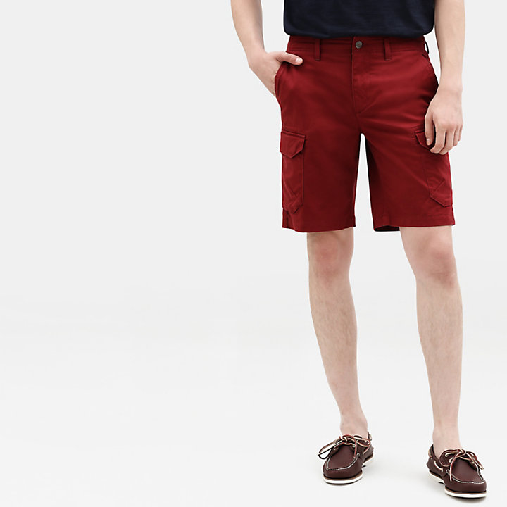 Webster Lake Cargo Shorts for Men in Burgundy-