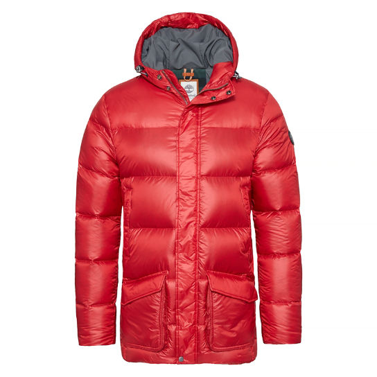 Men's Goose Eye Parka  Red | Timberland