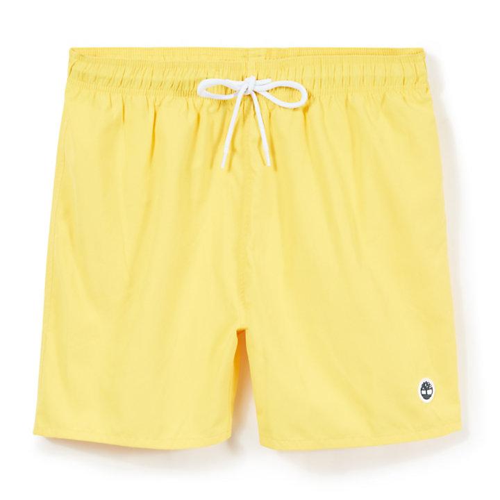 Sunapee Lake Swimming Trunks for Men in Yellow-