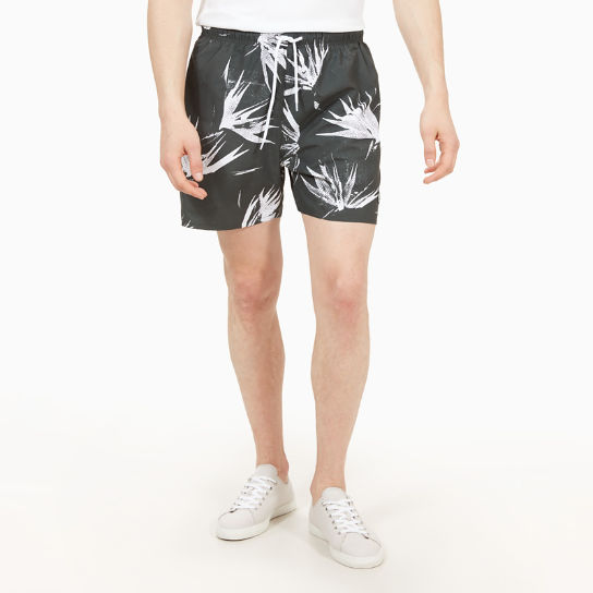 Sunapee Patterned Leisure Shorts for Men in Dark Green | Timberland
