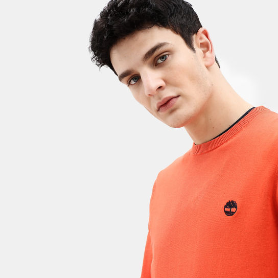 Manhan River Cotton Sweater for Men in Orange | Timberland