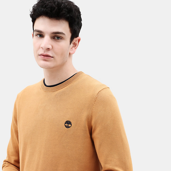 Manhan River Cotton Sweater for Men in Yellow-