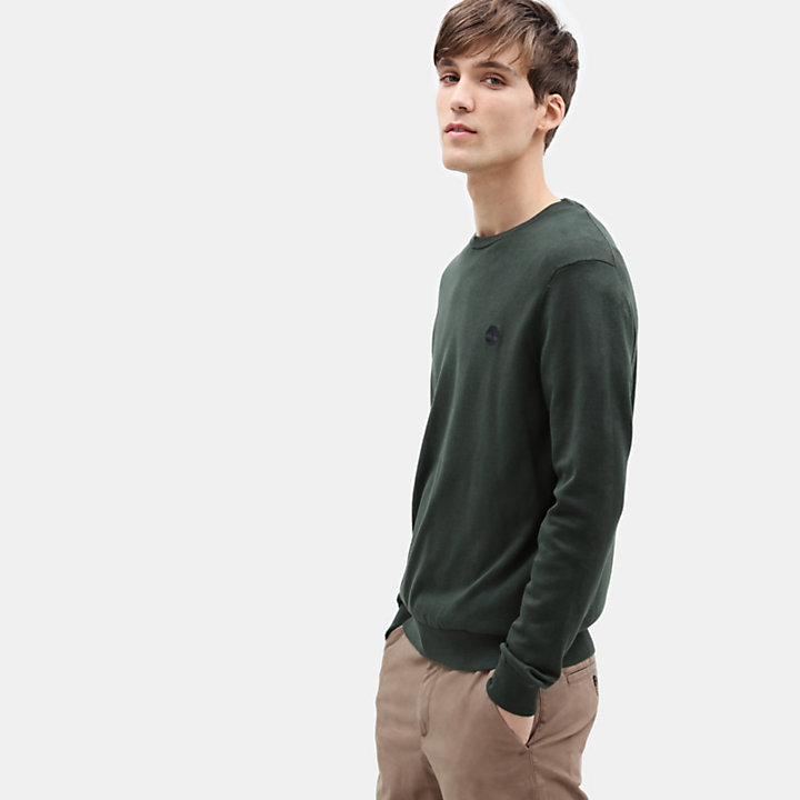 Manhan River Cotton Sweater for Men in Green-