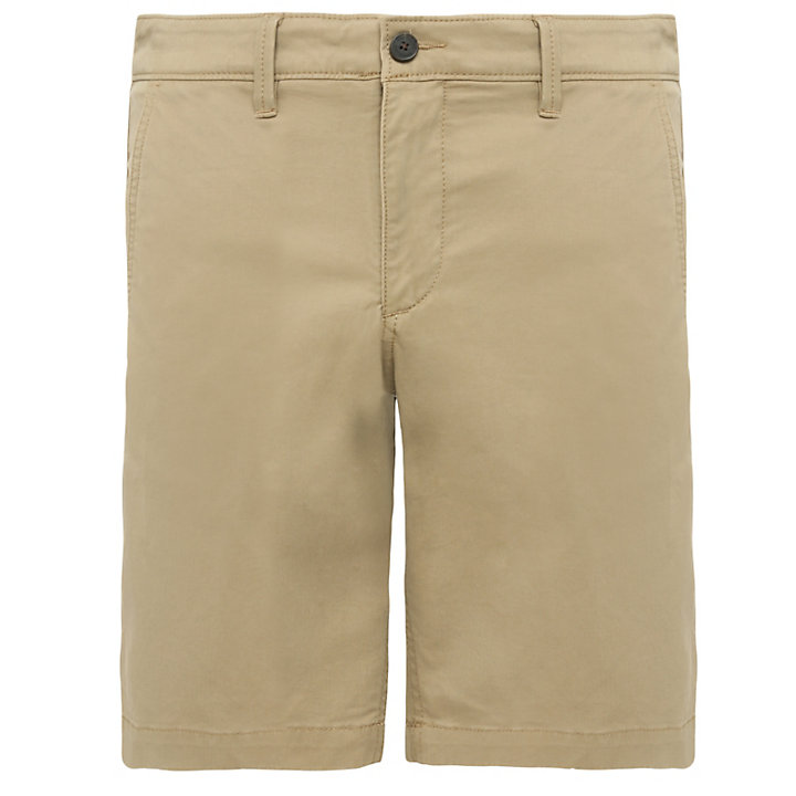 Shorts Chino da Uomo Squam Lake in kaki-