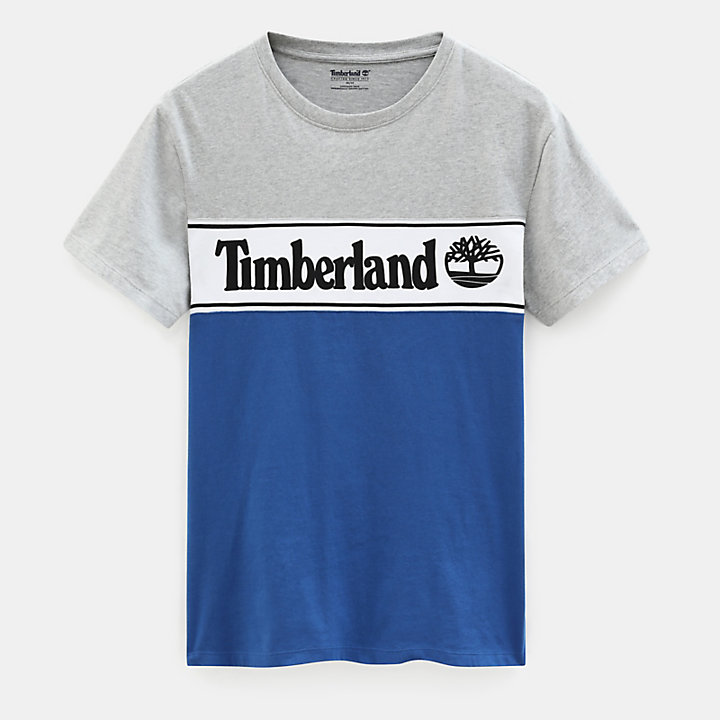 Linear Logo T-shirt for Men in Grey-