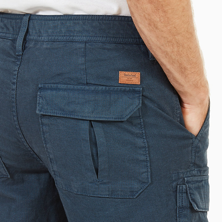 Webster Lake Cargoshorts für Herren in Indigo-
