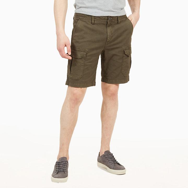 Webster Lake Cargo Shorts for Men in Green-