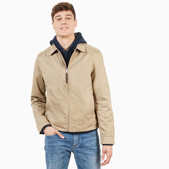 Stratham Cotton Bomber Jacket for Men in Beige | Timberland