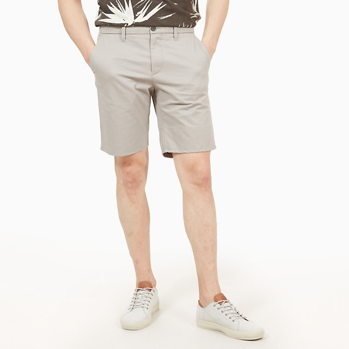 Squam Lake Shorts for Men in Grey-