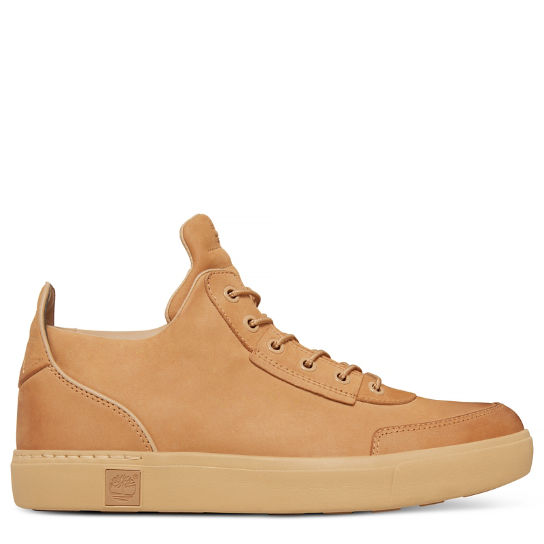 Amherst High Top Chukka Beige Heren | Timberland