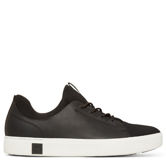 Amherst Trainer Negro Hombre | Timberland