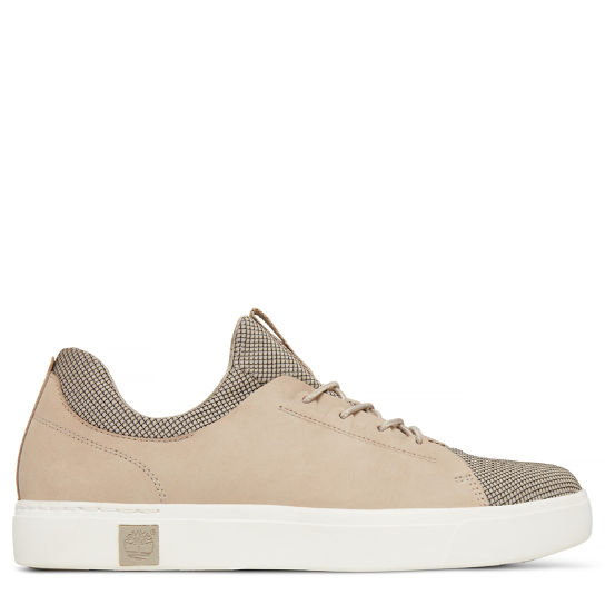 Men's Amherst Trainer Taupe | Timberland